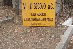pantanello9